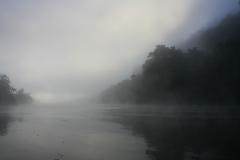 Australië Daintree rivier mist