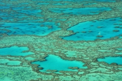 Australië awesome koraal great barrier reef vanuit de lucht