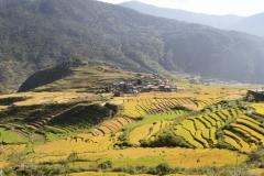 Punakha vallei Bhutan