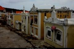 Laatste rustplaats Curacao met kinderen
