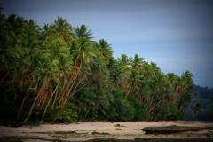 Fiji met kinderen ahh mooi strand