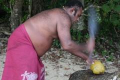 Fiji met kinderen kokosnoot