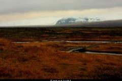 Fantastisch Thingvellir IJsland met kinderen