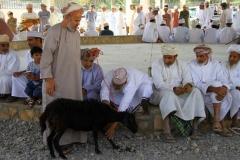 Al Hamra geiten markt Oman met kinderen