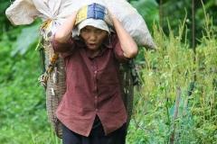 Vietnam allemachtig zwaar werk