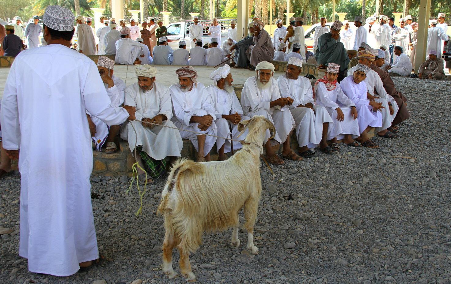 Geitenmarkt Nizwa Oman met kinderen
