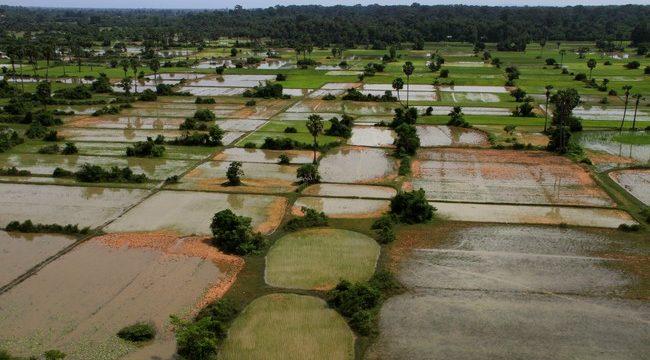 Uitzicht-op-Cambodja-platteland