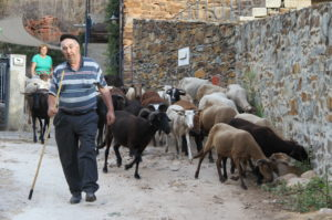 Alvoco das Varzeas Serra do Acor Noord Portugal